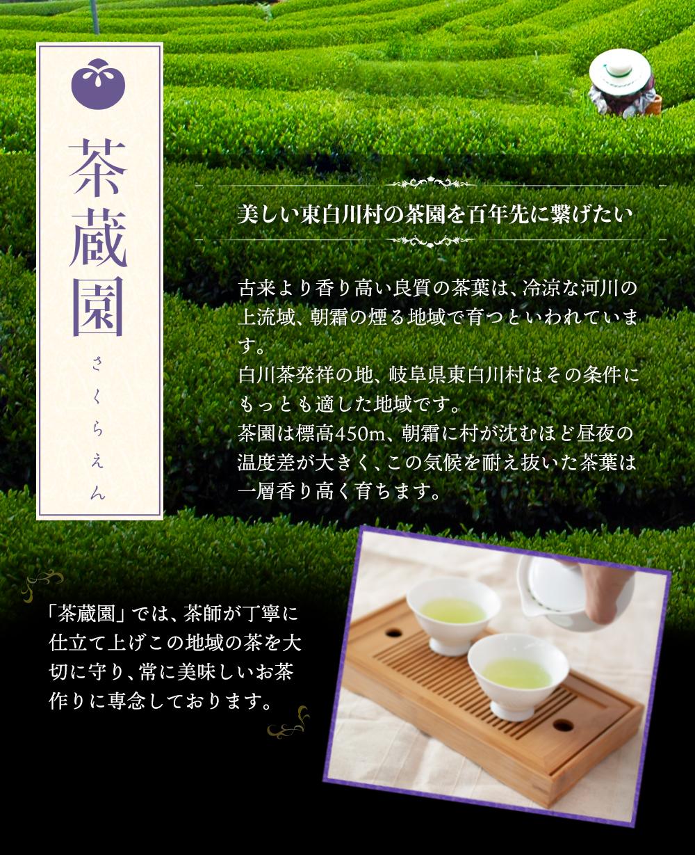 白川茶高級煎茶 天籟桐箱入り