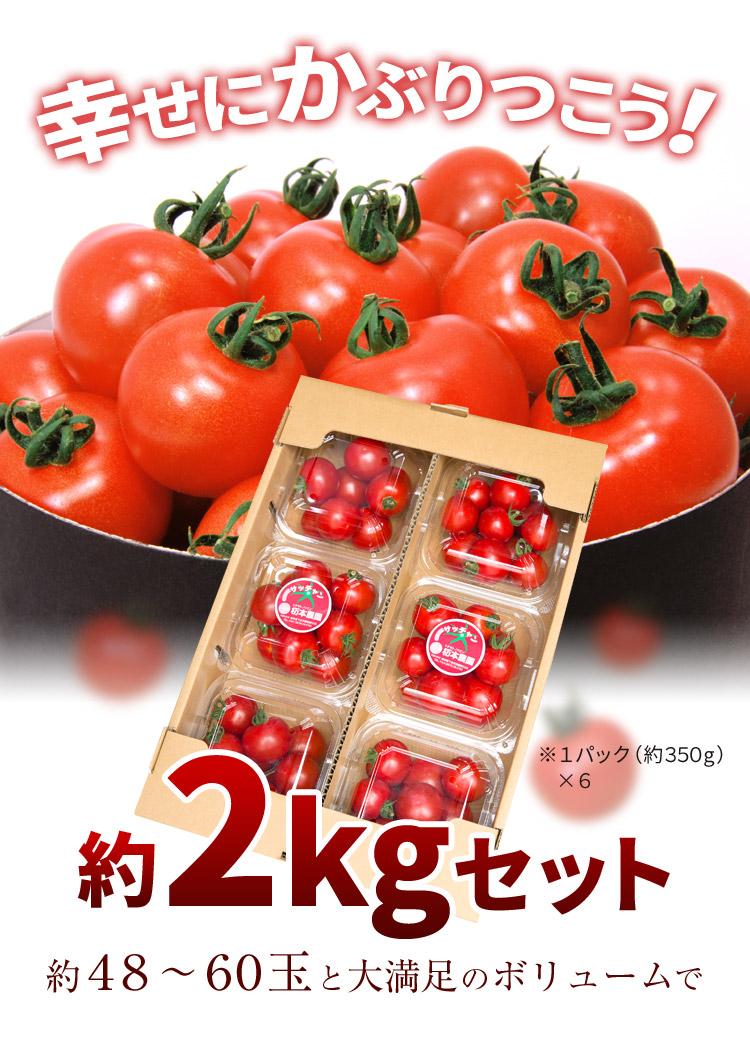 フルーツトマト1kgセット
