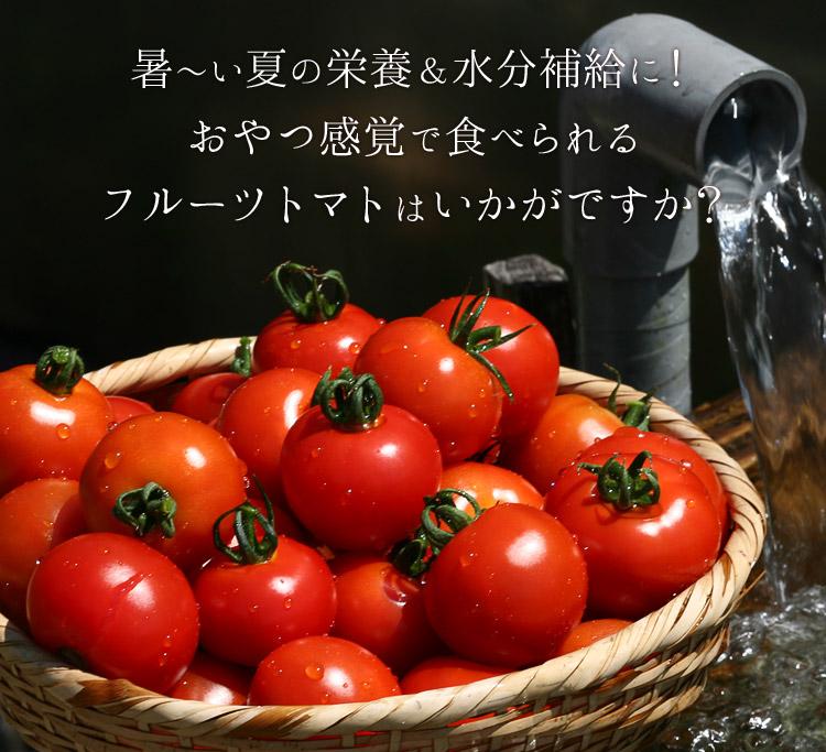 暑い夏にフルーツトマトはいかが?