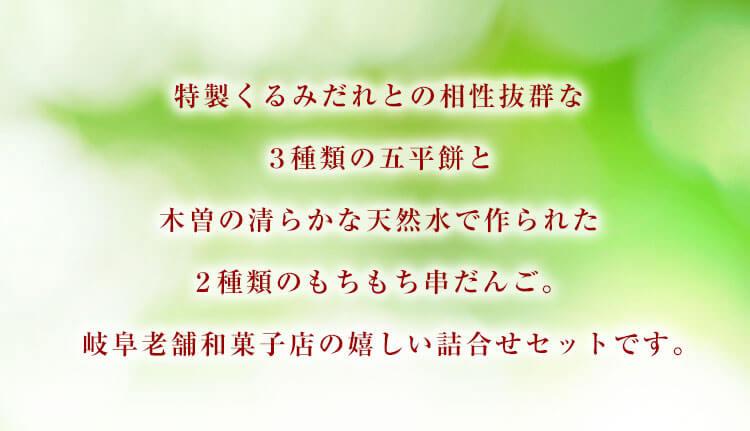 岐阜老舗和菓子店の特製五平餅・串だんご詰合せ