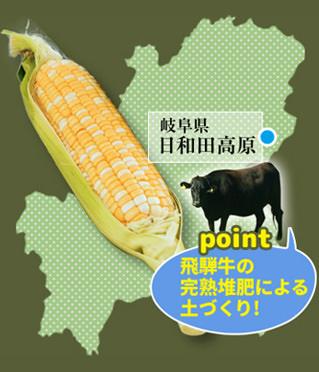 日和田高原