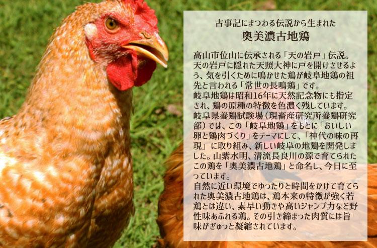 奥美濃古地鶏とは