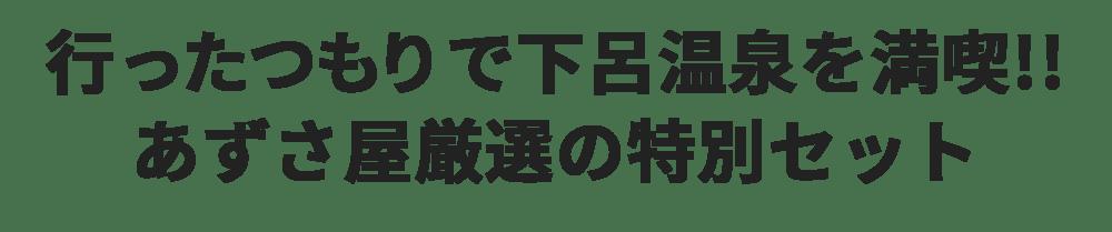 エア観光下呂温泉03