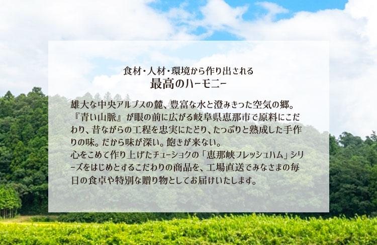恵那峡フレッシュハムとは1