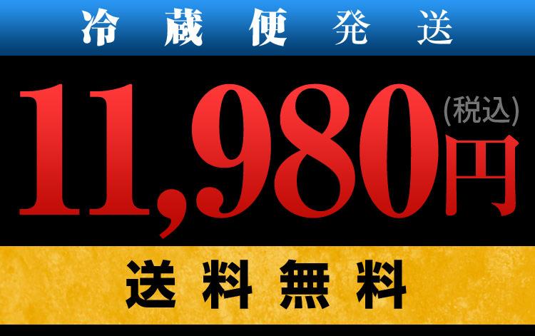 11664円