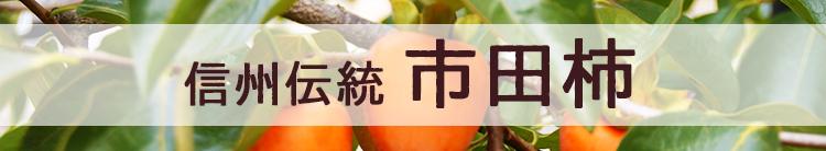 信州伝統市田柿