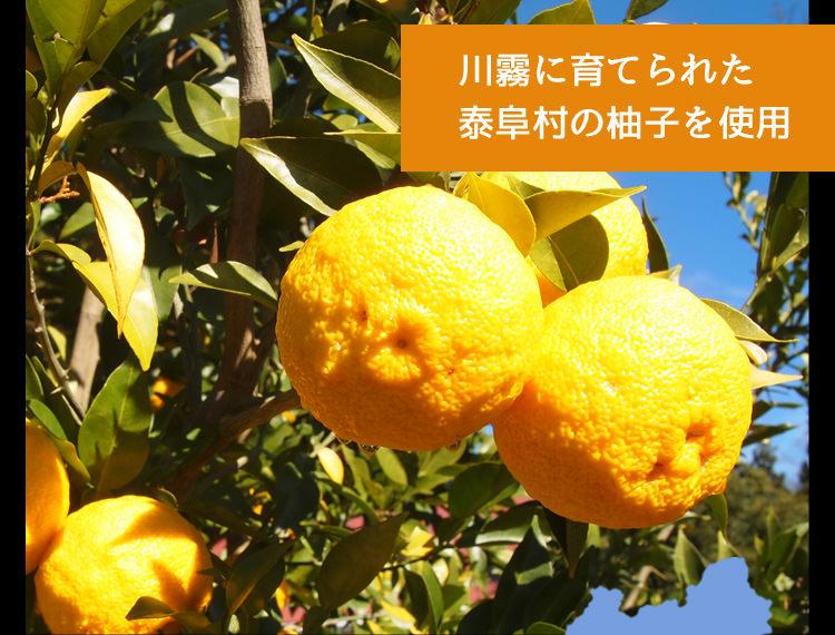 泰阜村の柚子使用