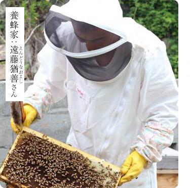 養蜂家 遠藤さん