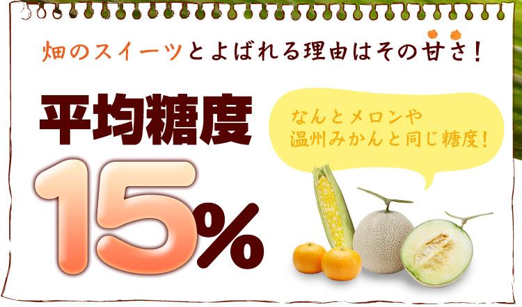 畑のスイーツと呼ばれる理由はその甘さ!平均糖度15%(メロンや温州みかんと同じ糖度)