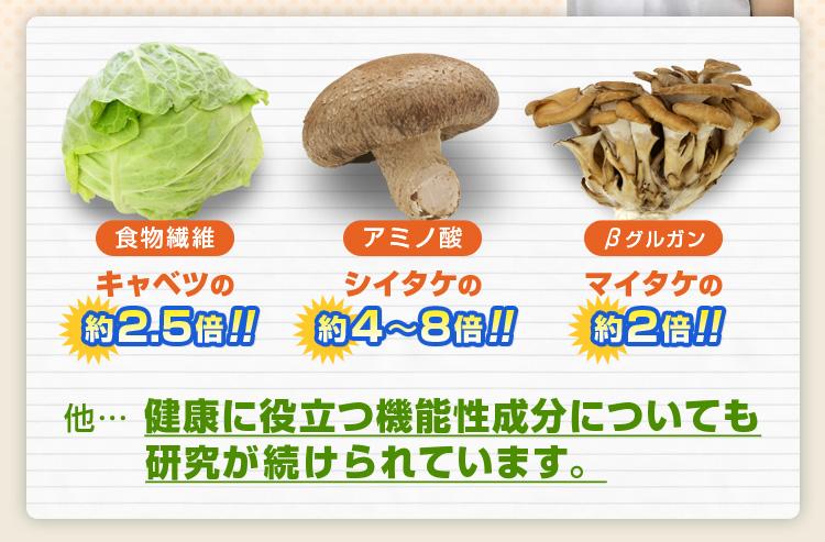 食物繊維:キャベツの2.5倍!アミノ酸:シイタケの4~8倍!ベータグルガンはマイタケの2倍!
