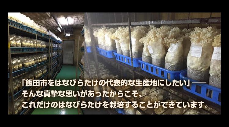 「飯田市をはなびらたけの代表的な生産地にしたい」そんな真摯な思いがあったからこそ、 これだけのはなびらたけを栽培することができています。