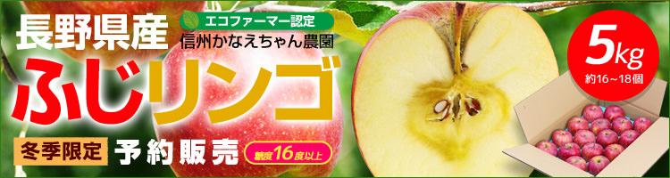 長野県かなえちゃん農園のふじリンゴ5kg