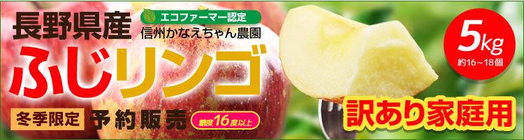 訳あり家庭用 長野県かなえちゃん農園のふじリンゴ5kg