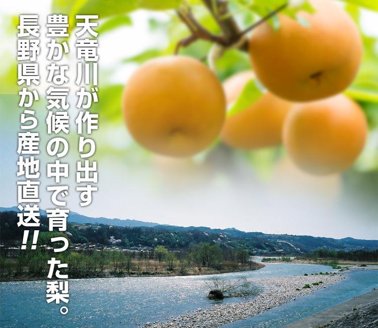長野県から産地直送
