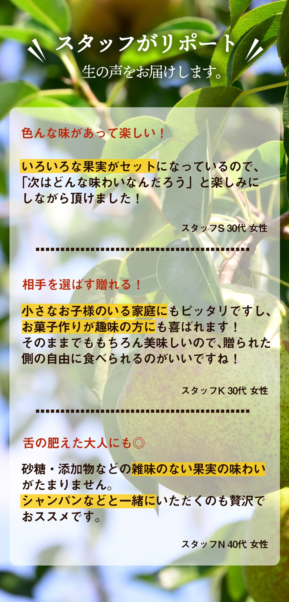 ドライフルーツ5種セット