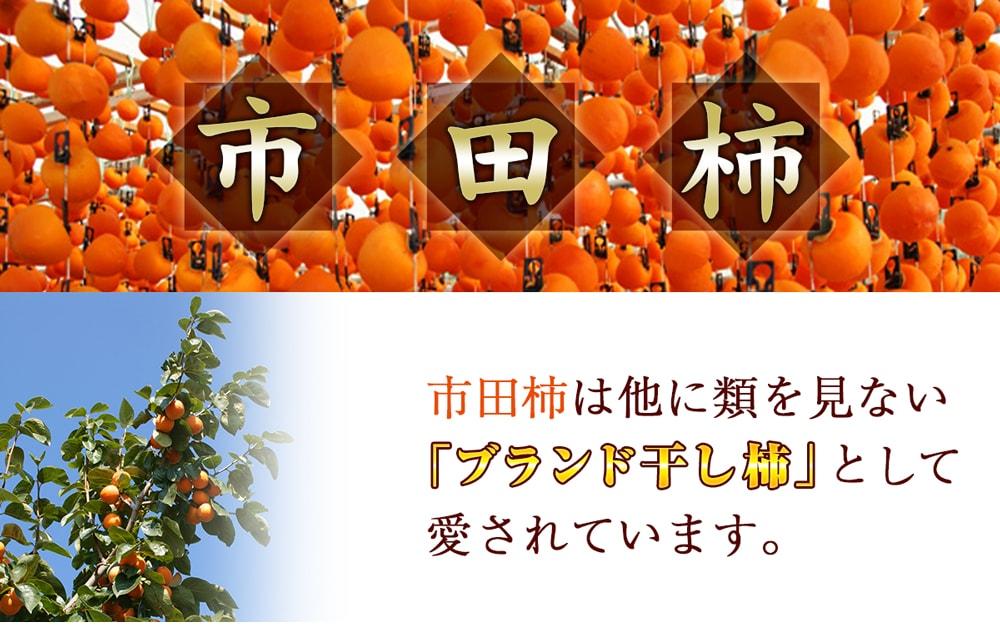 市田柿スイーツの贅沢2種セット