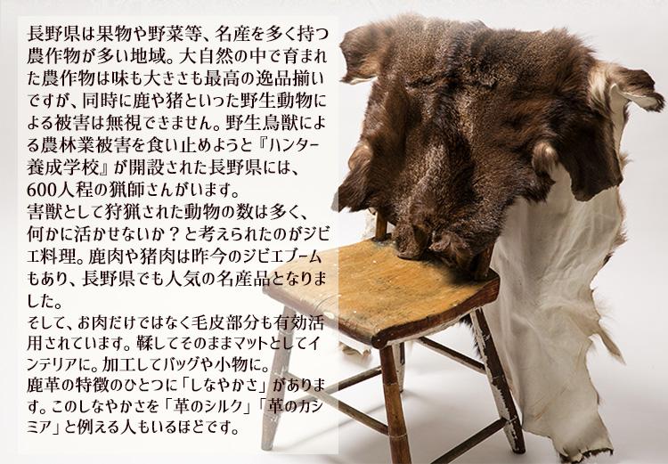 長野県の獣害