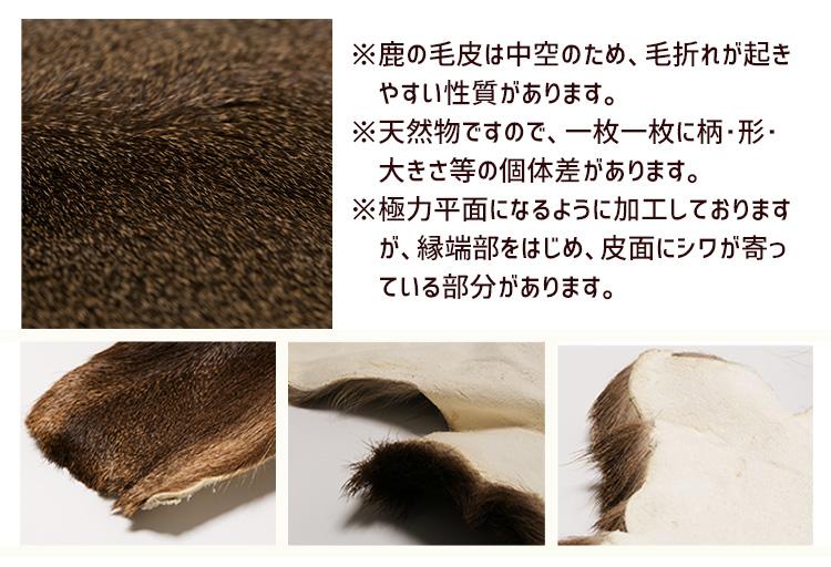 毛質について