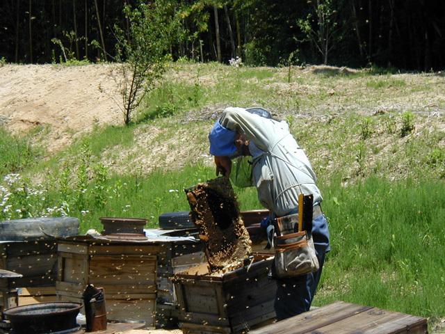 百花はちみつ養蜂場