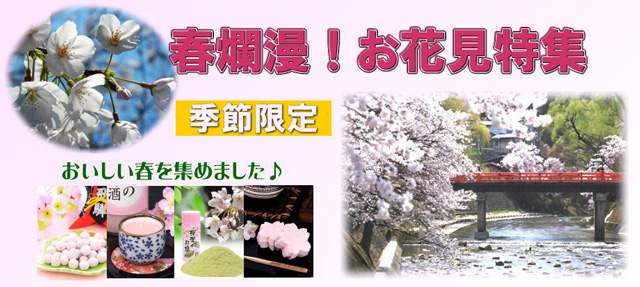 春爛漫!お花見特集