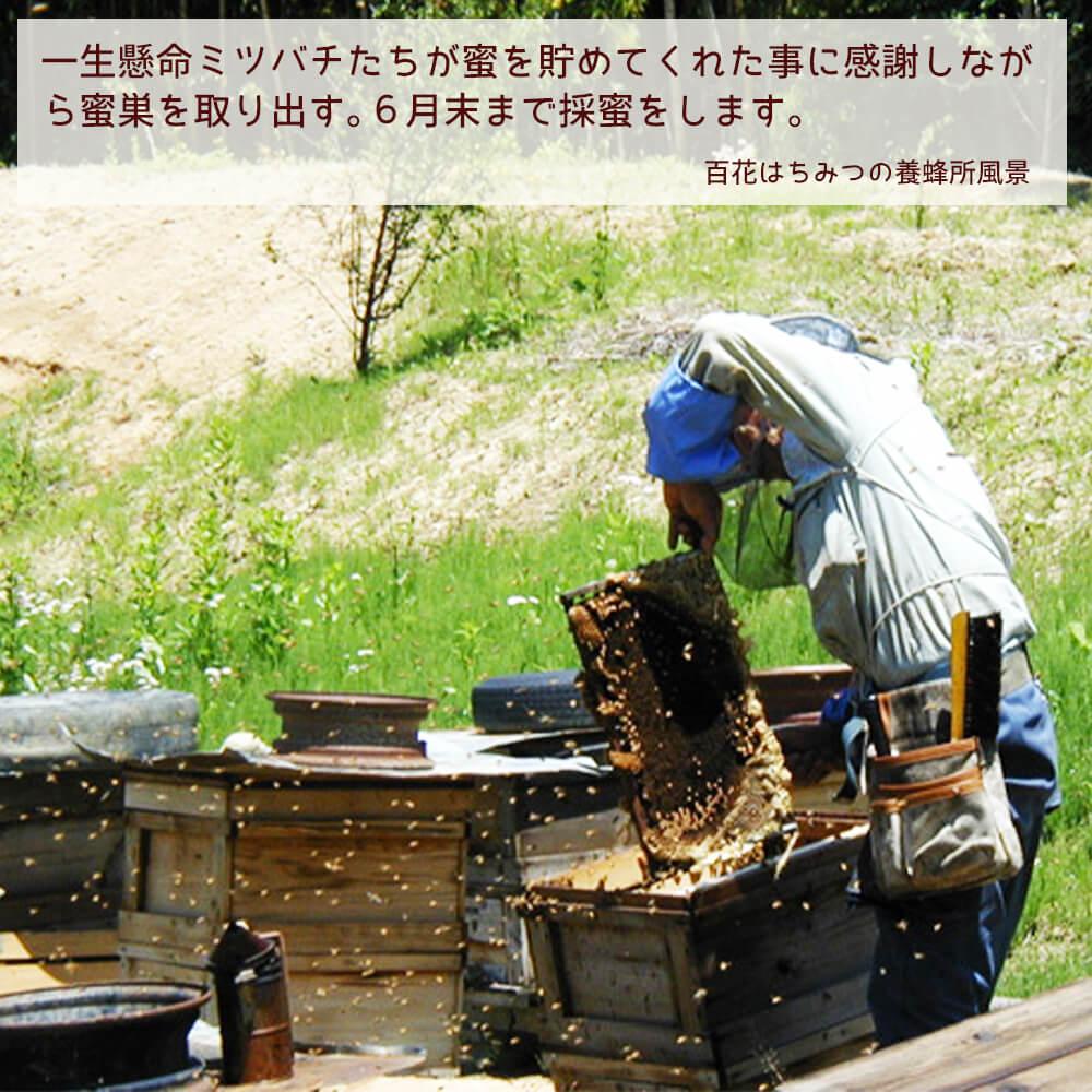 百花はちみつの養蜂所風景