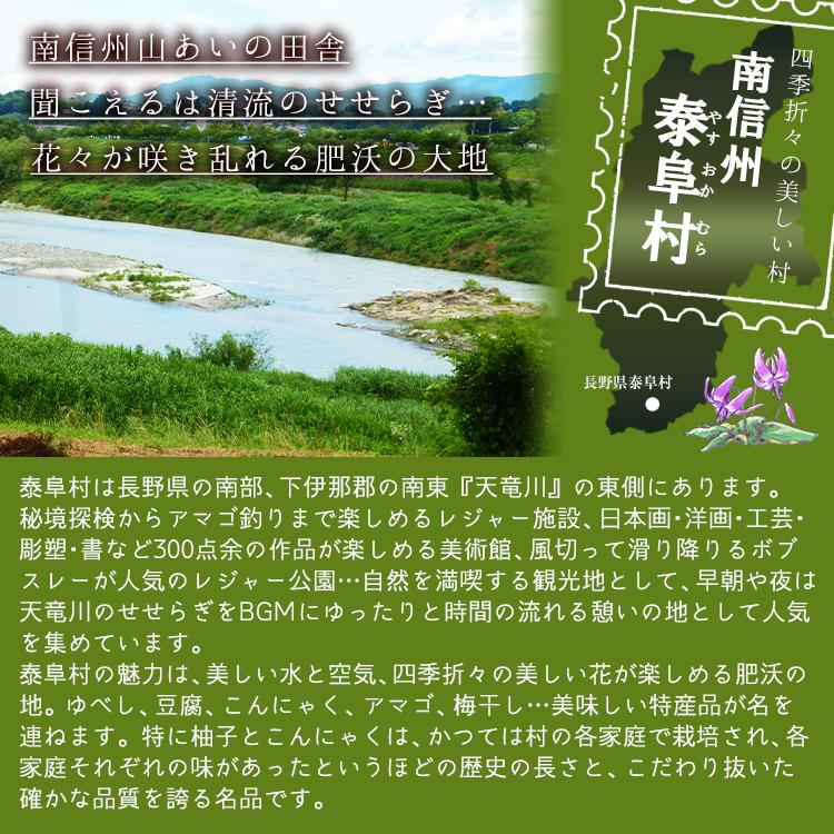 長野県泰阜村